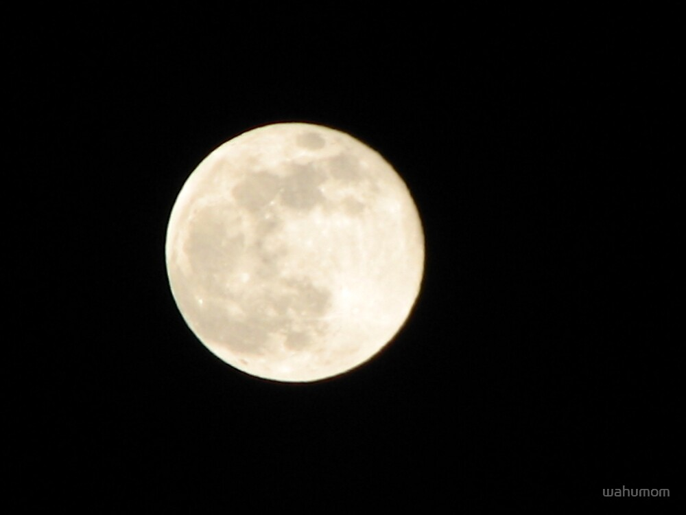 Making History....2008's Biggest Full Moon of the Year! by wahumom