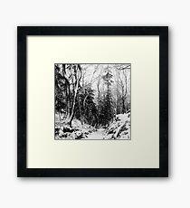 winter landscape in black and white Framed Print