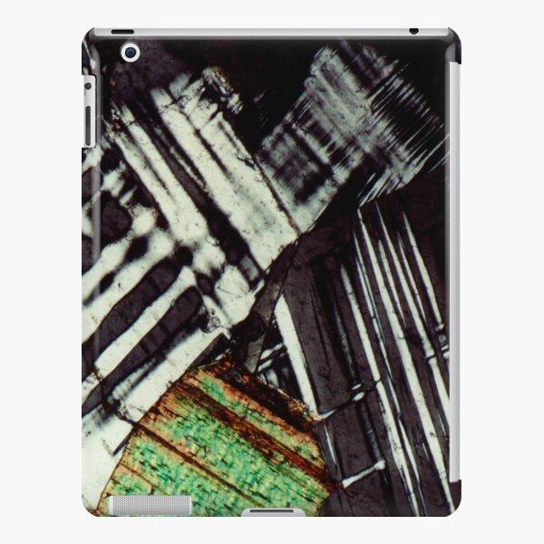 Twinned Feldspar & Blocky Biotite - Mineral Art iPad Snap Case
