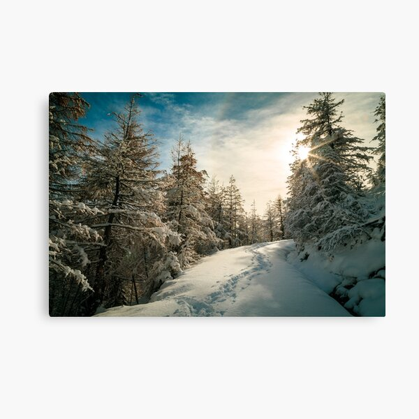 Sunny day in the alps after the snowfall Canvas Print