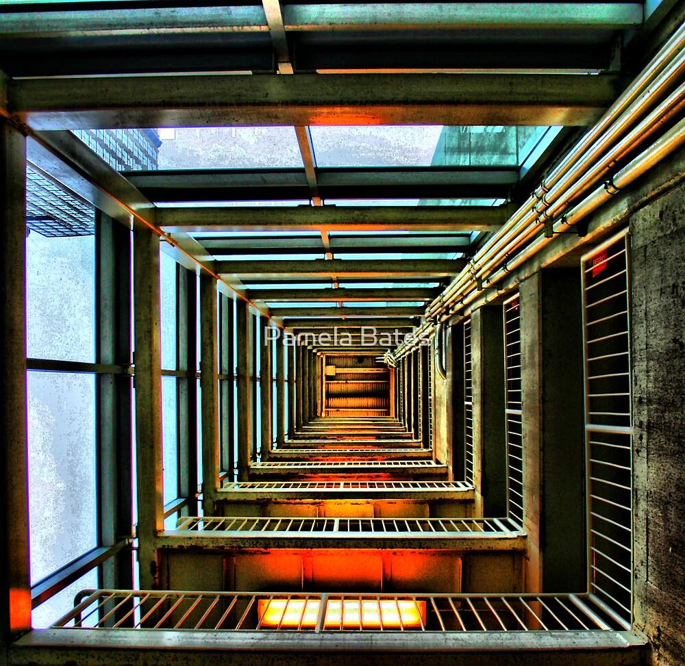 Optical Illusion by Pamela Bates