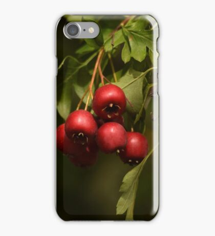 Beauty Is Everywhere!  iPhone Case/Skin