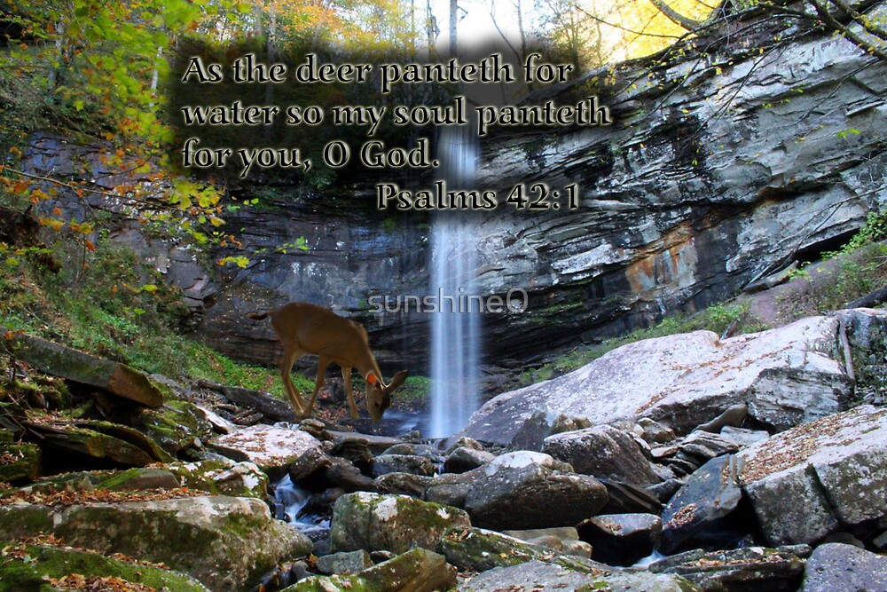 Quot As The Deer Panteth Quot By Sunshine0 Redbubble