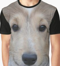 Shetland sheepdog Graphic T-Shirt