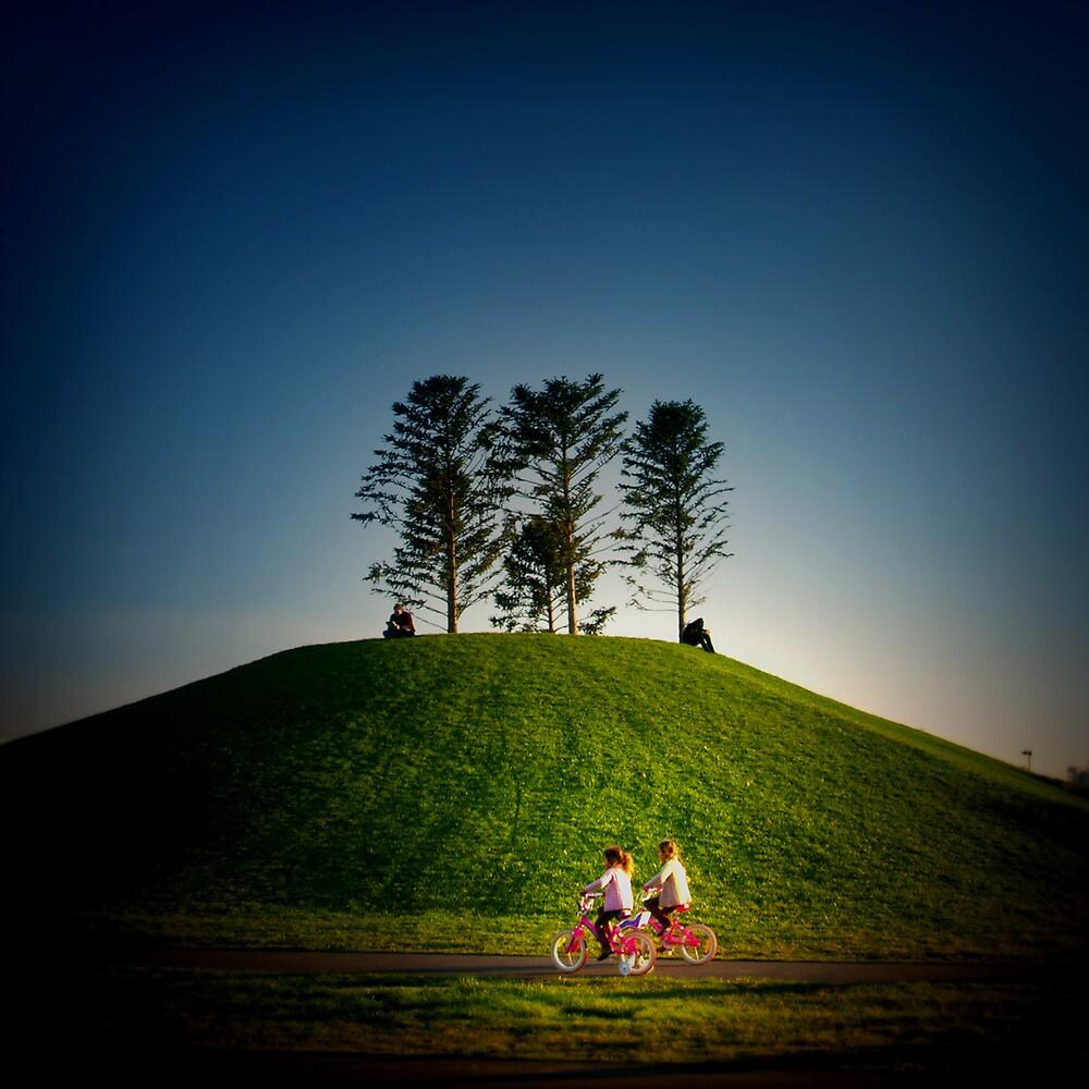 Twin Peak by Michelle Leong