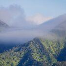Misty Mountain Oahu Hawaii by Elizabeth  Lilja