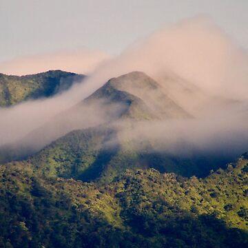 Misty Mountain Maui Hawaii by TheLoner