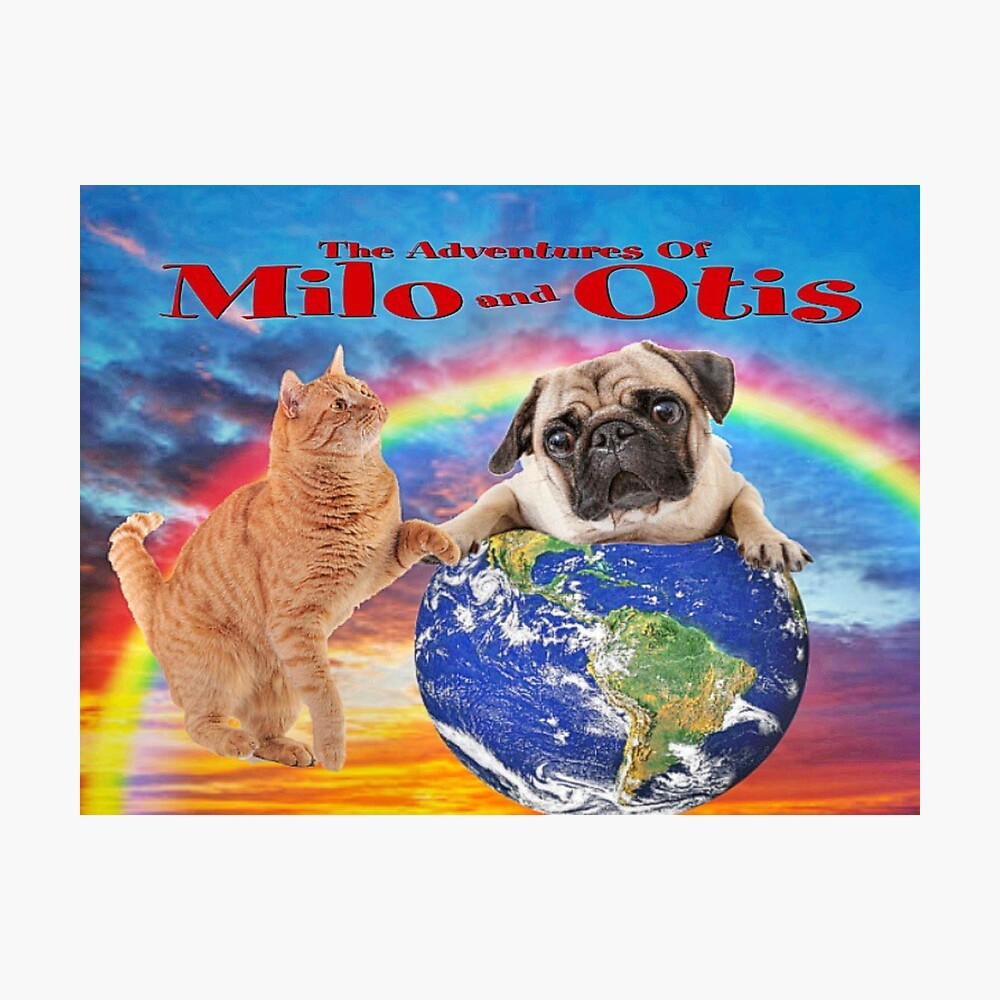Milo und Otis erobern die Welt Fotodruck