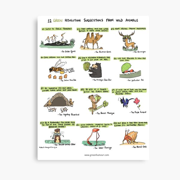 12 Green Resolution Suggestions from Wild Animals Canvas Print