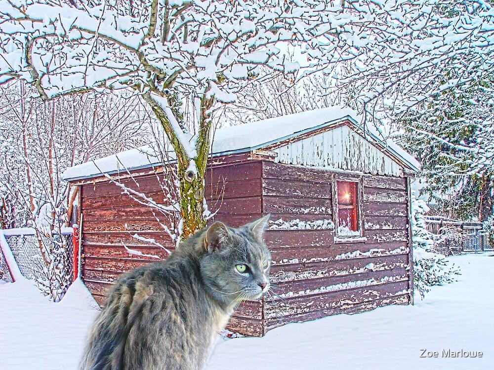 Snow Kat by Zoe Marlowe