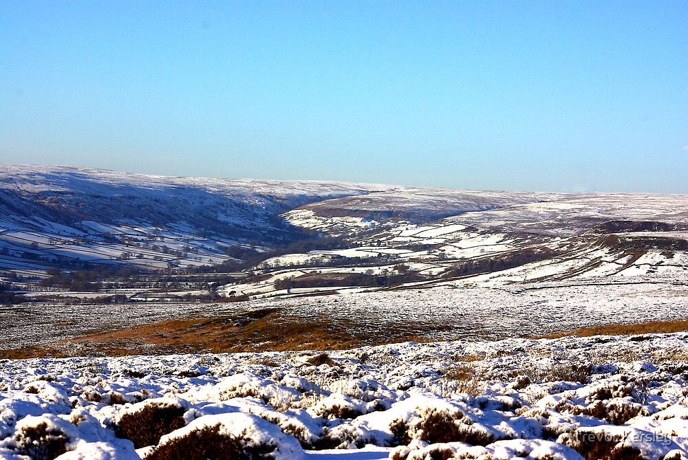 Views of the North Yorks Moors National Park by Trevor Kersley