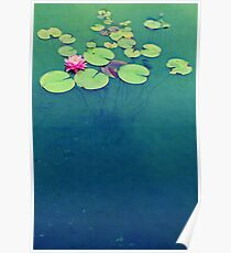 Lily Pond Blues Poster