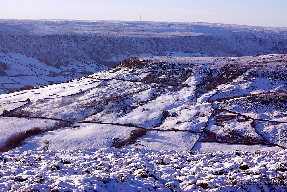 Views of the North Yorks Moors National Park #3 by Trevor Kersley