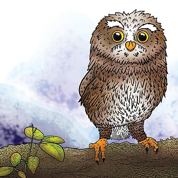 Owl by Zahmbei
