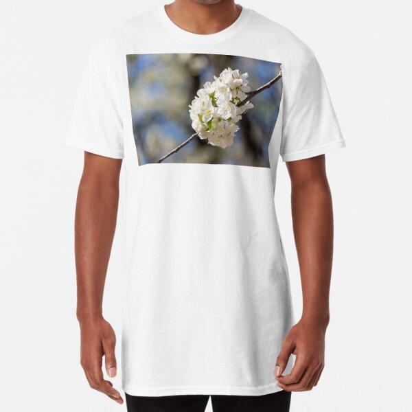 flowers of apple tree in sunlight Long T-Shirt