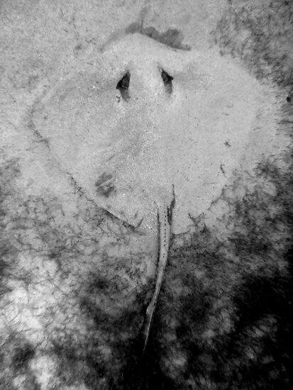 Sand Angel by TaiHaku
