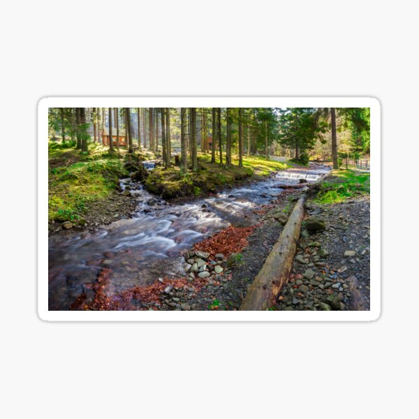 river shore in national park with late in autumn Sticker
