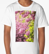 pink flowers of sakura branches above grass Long T-Shirt
