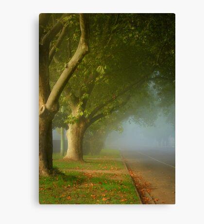 The fair luminous mist ... Canvas Print