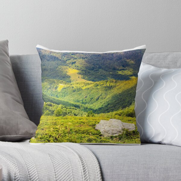 hillside with stones in high mountains Throw Pillow