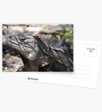 Ricord's Iguana Postcards