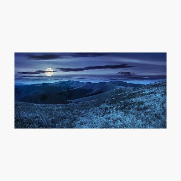 wild grass on mountain top at night Photographic Print