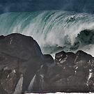 Pacific Ocean Roller by Elizabeth  Lilja