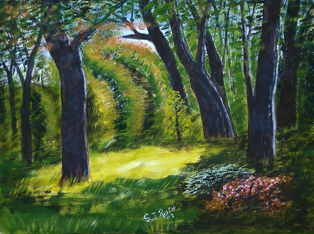 Fauna Park  - Doran Road, Bunyip by Samuel Ruth