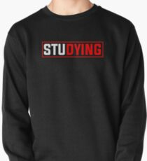 Studying Pullover