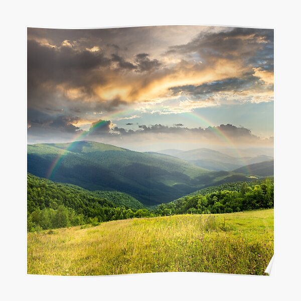 meadow in high mountains Poster