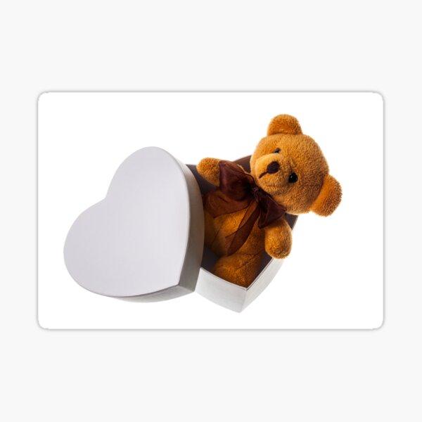 bear in heart box Sticker