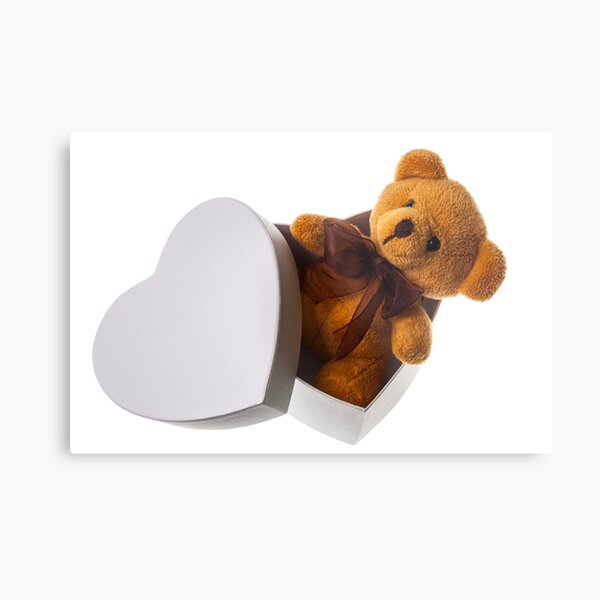 bear in heart box Metal Print