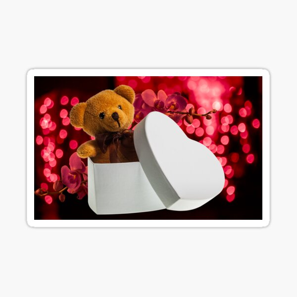 bear with orchid in heart box Sticker