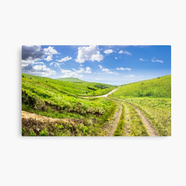 path through highland meadows Metal Print
