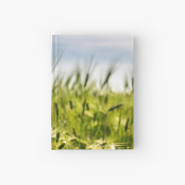 red poppy in the wheat field Hardcover Journal