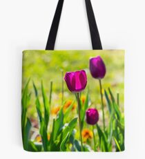 purple tulip on blurred background of grass  Tote Bag