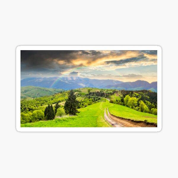 road through the meadow on hillside Sticker