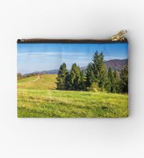 coniferous forest on a  hillside Studio Pouch