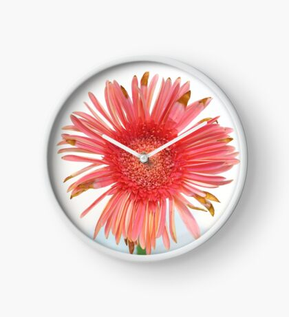 Quite Nice But Not Quite Perfect Daisy Clock