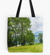 forest glade on hillside Tote Bag