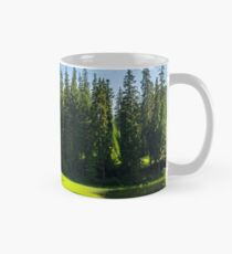 bower on the lake in forest Classic Mug