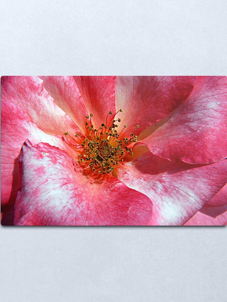 Alternate view of Pink Floral Metal Print