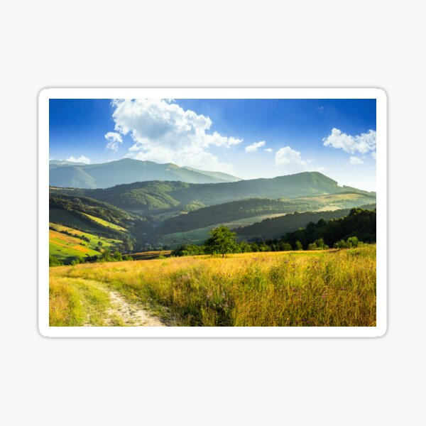 path on hillside meadow in mountaincomposite rural landscape. meadow path  on hillside with trees near the forest in high mountains Sticker