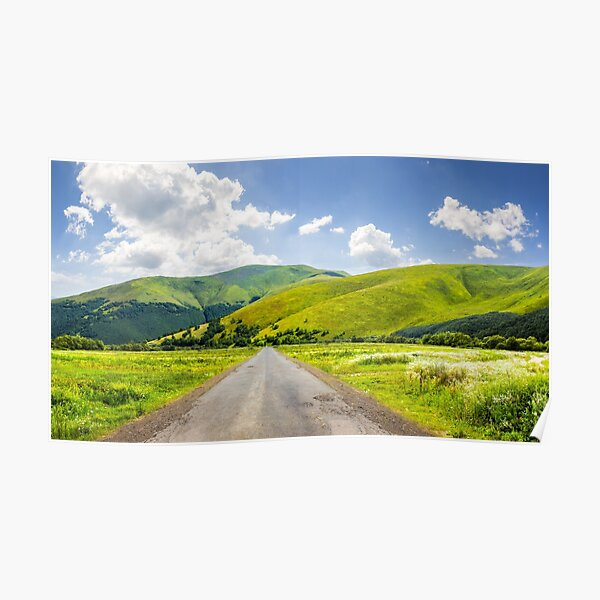abandoned road through meadows in mountain Poster