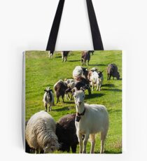 portrait of a white goat with a bell on a glade Tote Bag