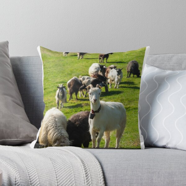 portrait of a white goat with a bell on a glade Throw Pillow