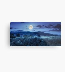meadow with flowers in mountains at night Metal Print