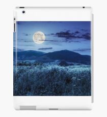 meadow with flowers in mountains at night iPad Case/Skin