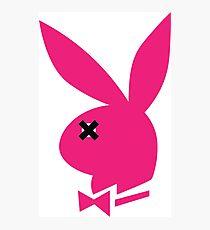 Pink Bunny Photographic Print