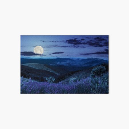 wild flowers on the mountain top at night Art Board Print